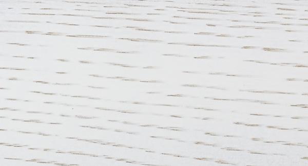 legno rovere tinto bianco antico